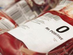 Demi Kesehatan, Orang yang Golongan Darah O Sebaiknya Hindari Makanan Ini!