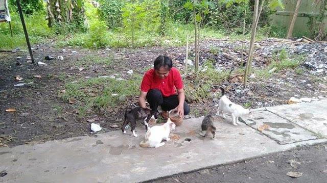 Berkat Menyelamatkan Kucing, Saya Selalu Dimurahkan Rezeki Hingga Kaya Raya
