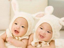 Pengaruh Gen Ibu Lebih Dominan Untuk Memiliki Anak Kembar