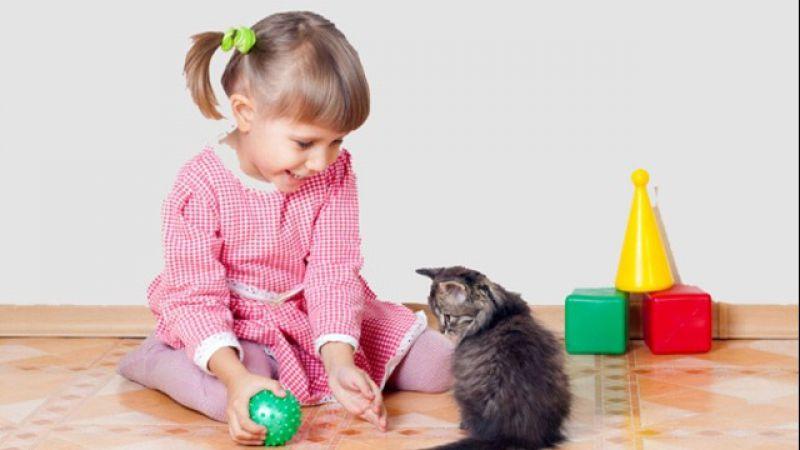 4 Manfaat Menakjubkan Memelihara Kucing, Khususnya Untuk Anak Kecil