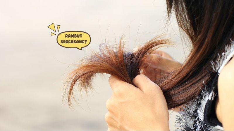 Lakukan 9 Cara Ini Untuk Mengatasi Rambut Bercabang