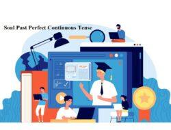 Contoh Soal Past Perfect Continuous Tense Opsi Ganda Dan Tanggapan